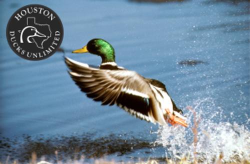 Houston Ducks Unlimited