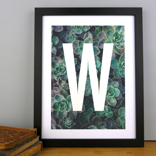 Succulent Plant Foliage Alphabet Initial Letter Print by Dig The Earth