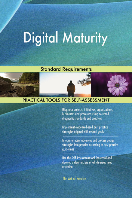 Digital Maturity Standard Requirements