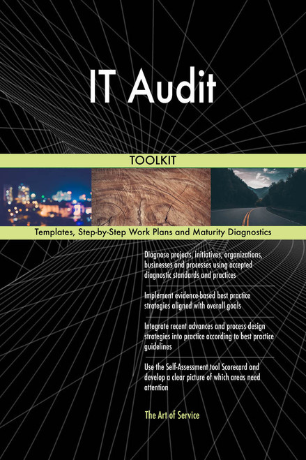 IT Audit Toolkit: best-practice templates, step-by-step work plans and maturity diagnostics