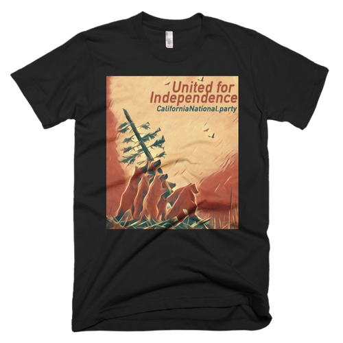 United for Independence - short sleeve men's t-shirt