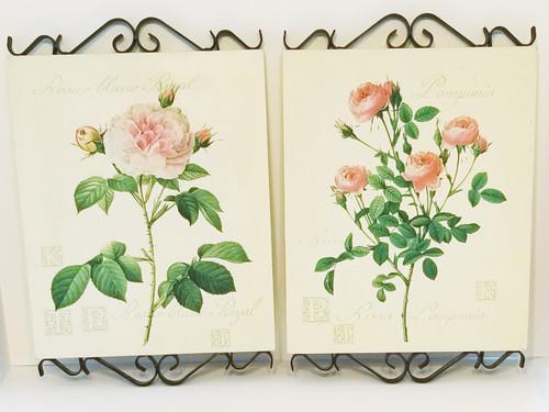 Rosier Blanc Royal & Rosa Pomponia Botanical Litho-Canvas w/Metal Scrolls