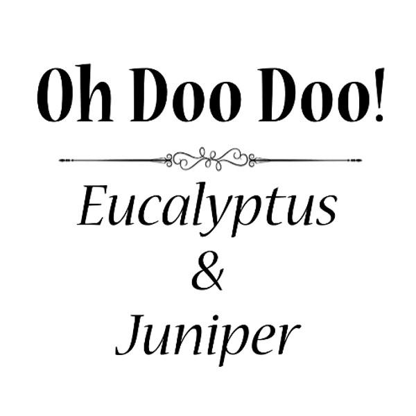 Oh Doo Doo SS (single)