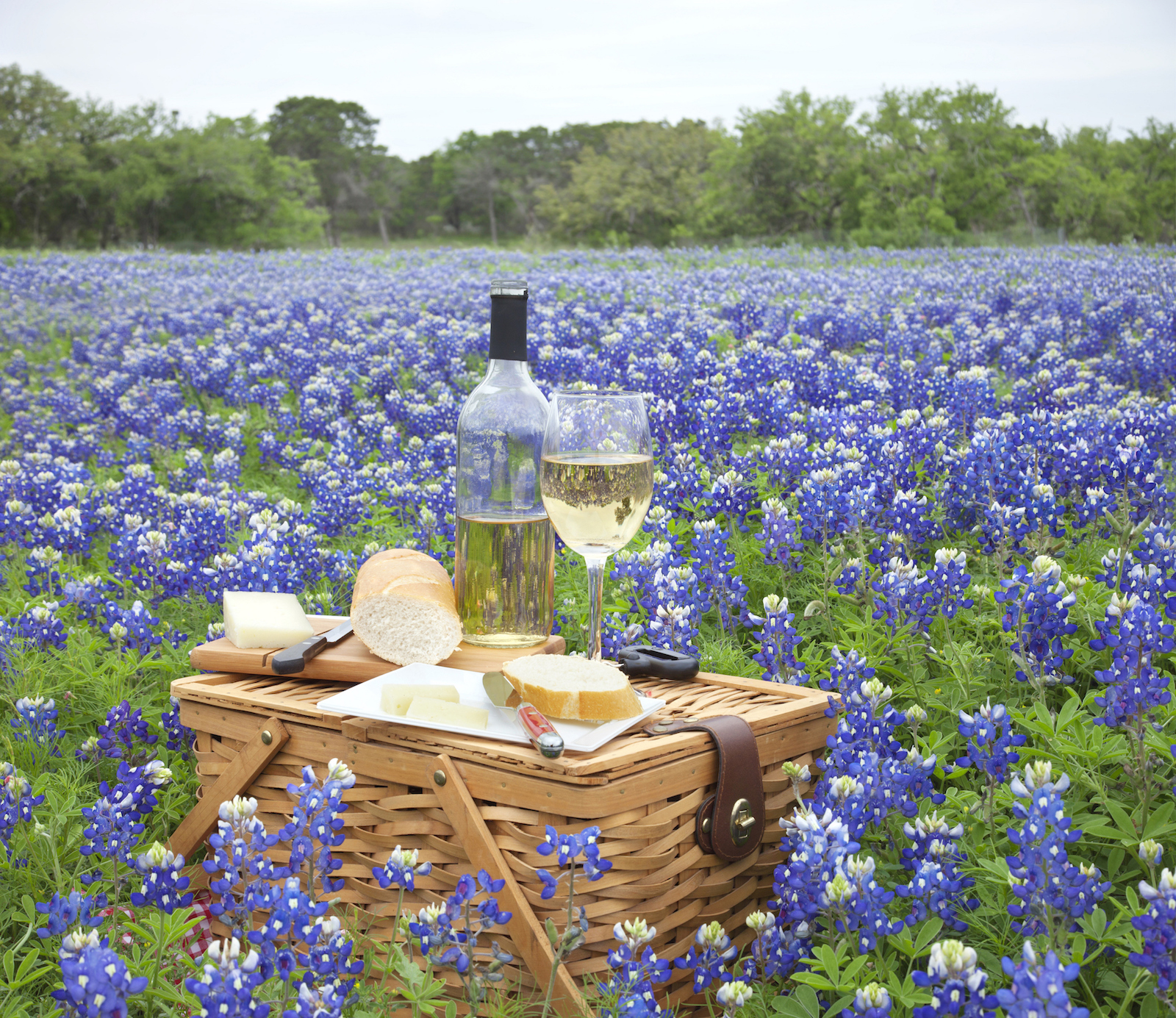 best-texas-hill-country-wineries-to-visit.jpg