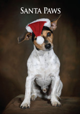 Santa Paws Christmas Card Jack Russell