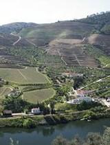 Port News April 2014 - Fladgate declared the following non classic vintage Ports - Taylor's Quinta de Vargellas, Fonseca Guimaraens and Croft Quinta da Roêda