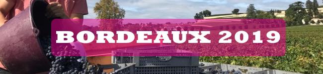 bordeaux-2019.jpg