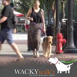 Overstock - Shorter No Pull Leash - Urban Walk'r