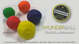 Groovy Golden Doodles Reviews the WUNDERBALL (Spoiler alert - They Loved it!!)