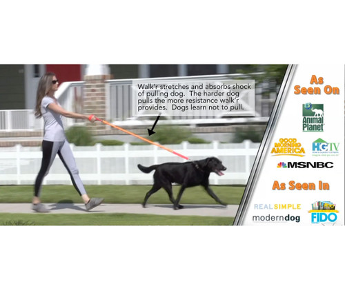 The leash stretches and absorbs the shock, reduces the pulling power, and provides instant correction to help train your pooch not to pull.