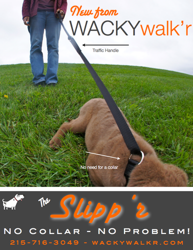 Leash & Slip Collar Combined - Slipp'r