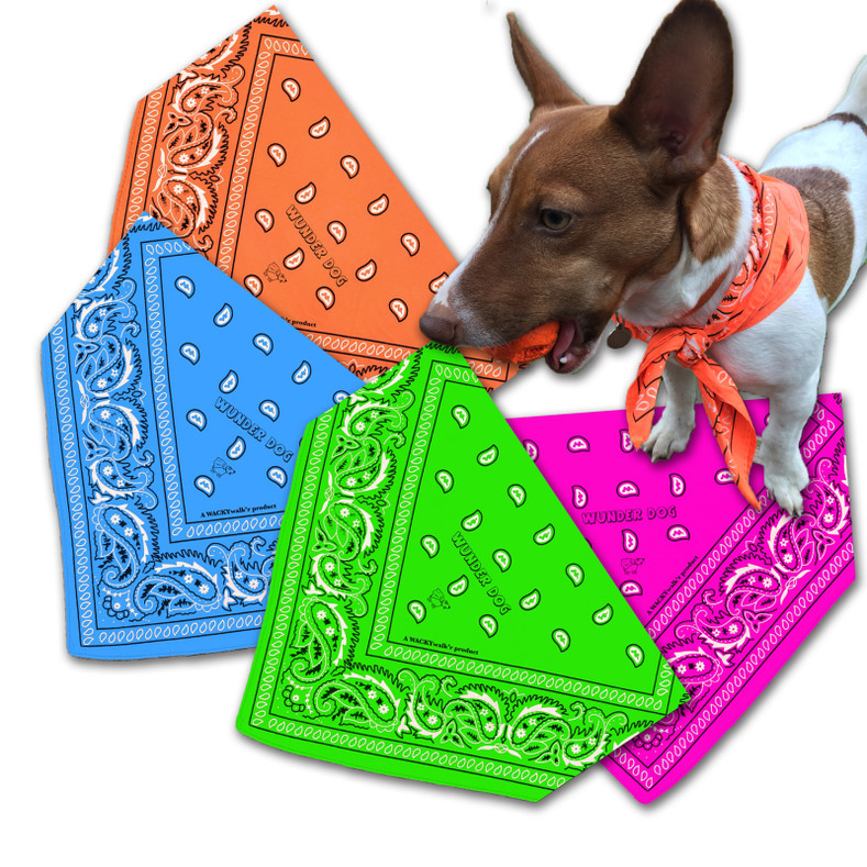 Wunder Dog Bandana is now available in Fun Colors
