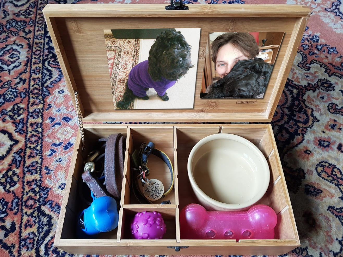 organize pet memories