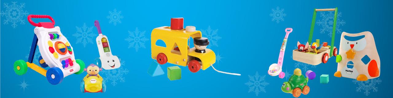 Push n Pull Toys