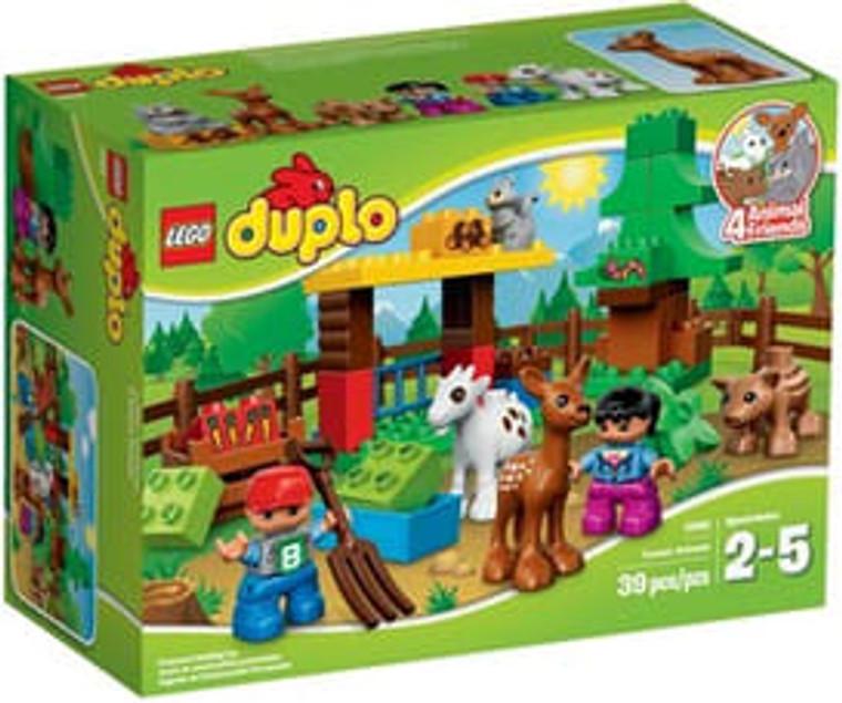 Forest: Animals (Damaged Box)