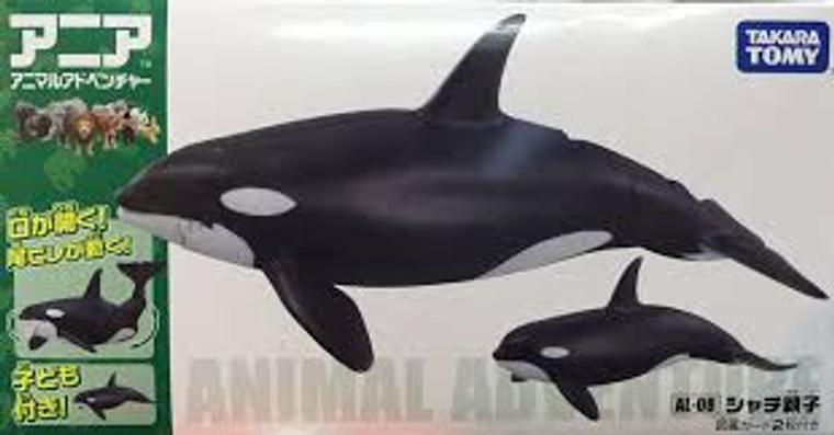 ANIA AL-08 Killer Whale