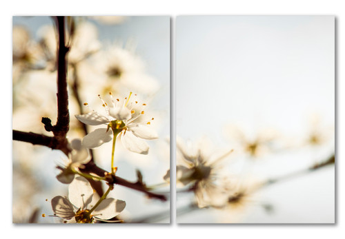 Calibrate Diptych