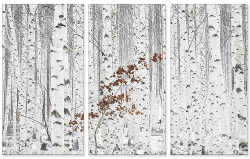 From White Triptych