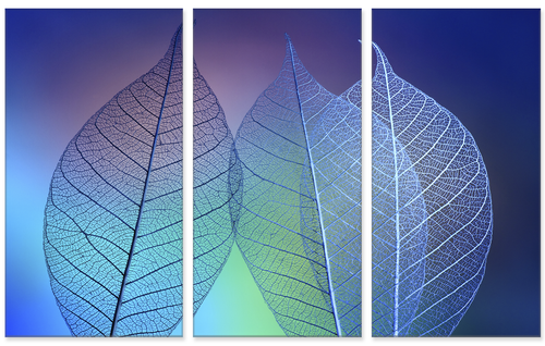 Prismatic Leaves Triptych