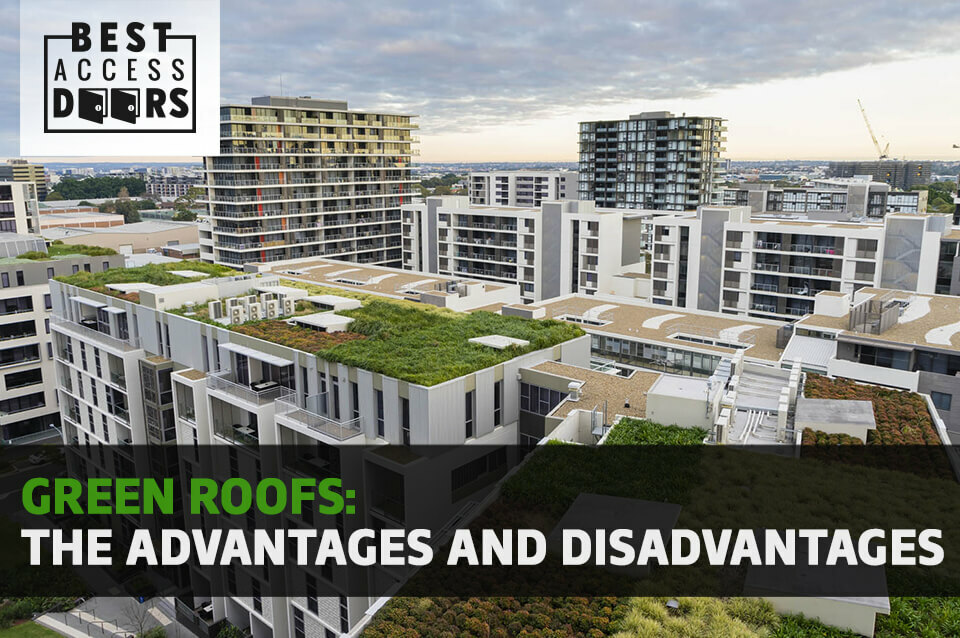 Green Roofs: The Advantages and Disadvantages