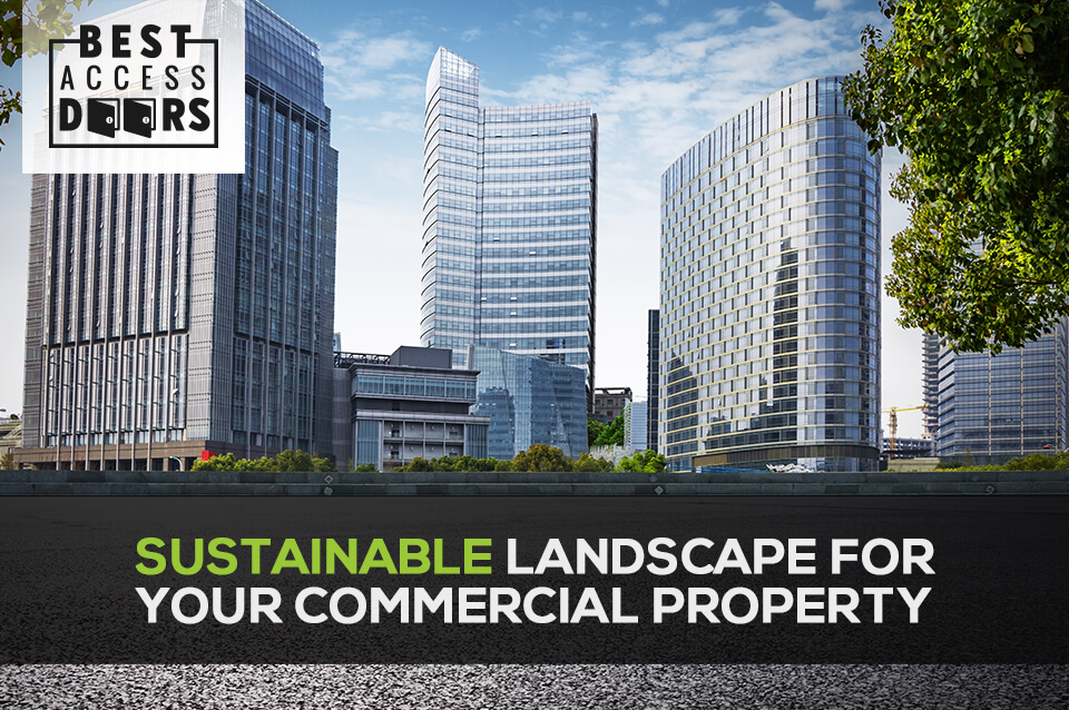 Sustainable Landscape For Your Commercial Property