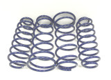 Ford Performance Street Lowering Springs (2005-14 Coupe)