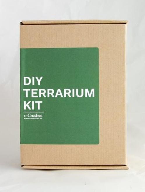 Crushes DIY Terrarium Kit