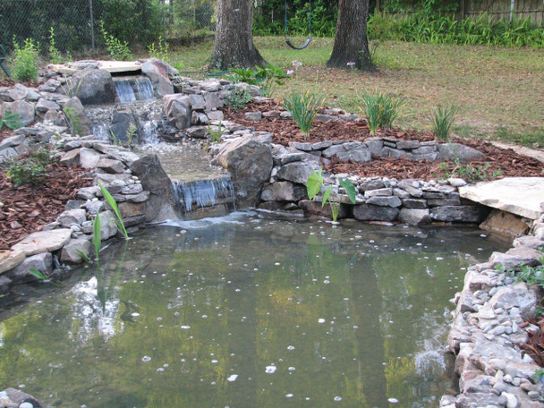 Newly installed 8' x 11' pond with our Pondineer kit!