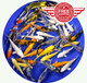 4-5 inch Regular Koi Premium Grade Ship for FREE!