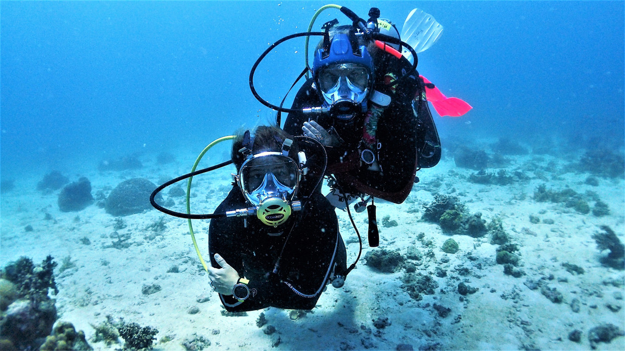 PROFESSIONAL DIVERS LINE IDMs