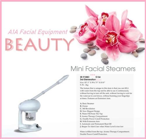 Mini Facial Steamer with Ozone
