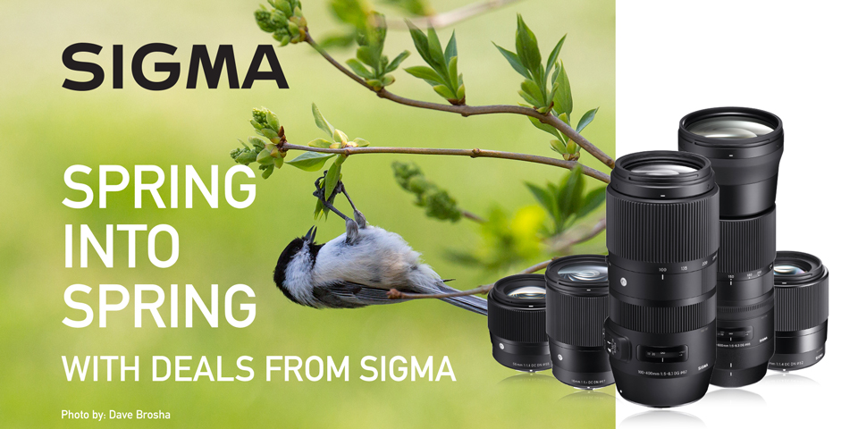 Sigma Spring Into Spring