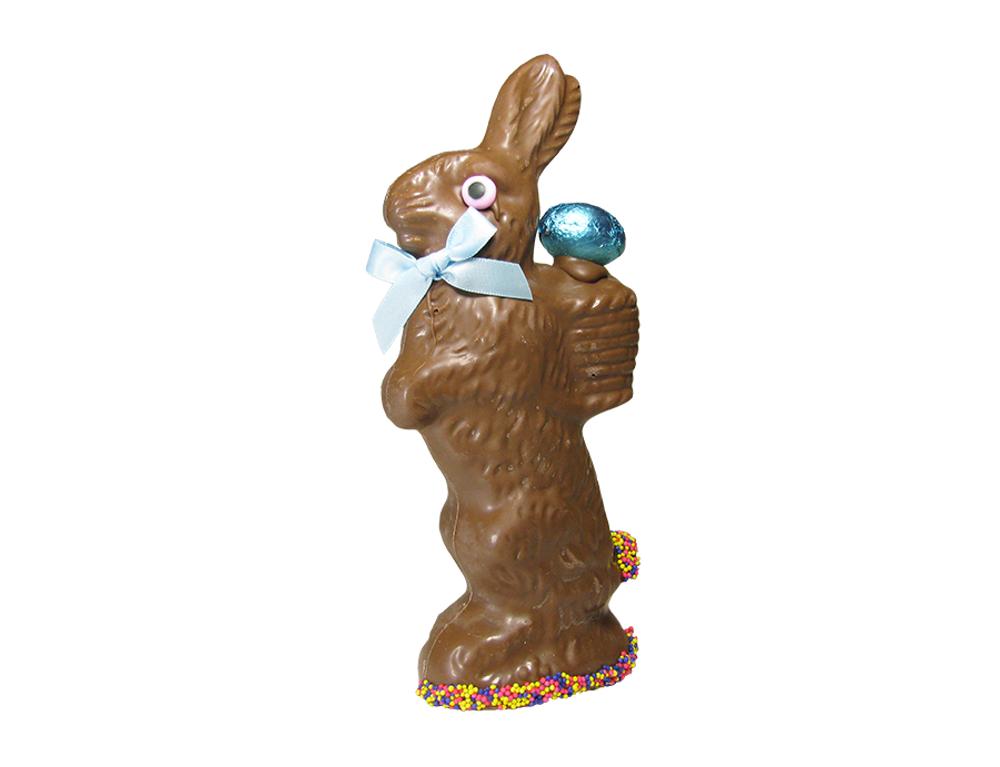 Susan Rabbit-Solid