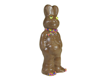 Potbelly Bunny-Solid