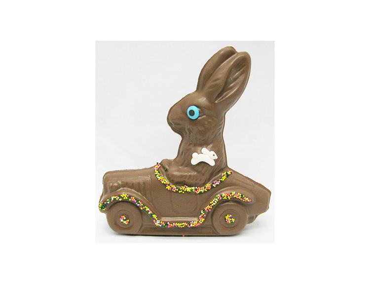 Bunny in Car