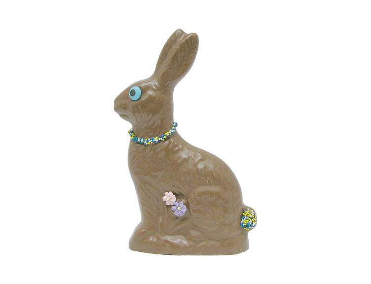 Ron Rabbit