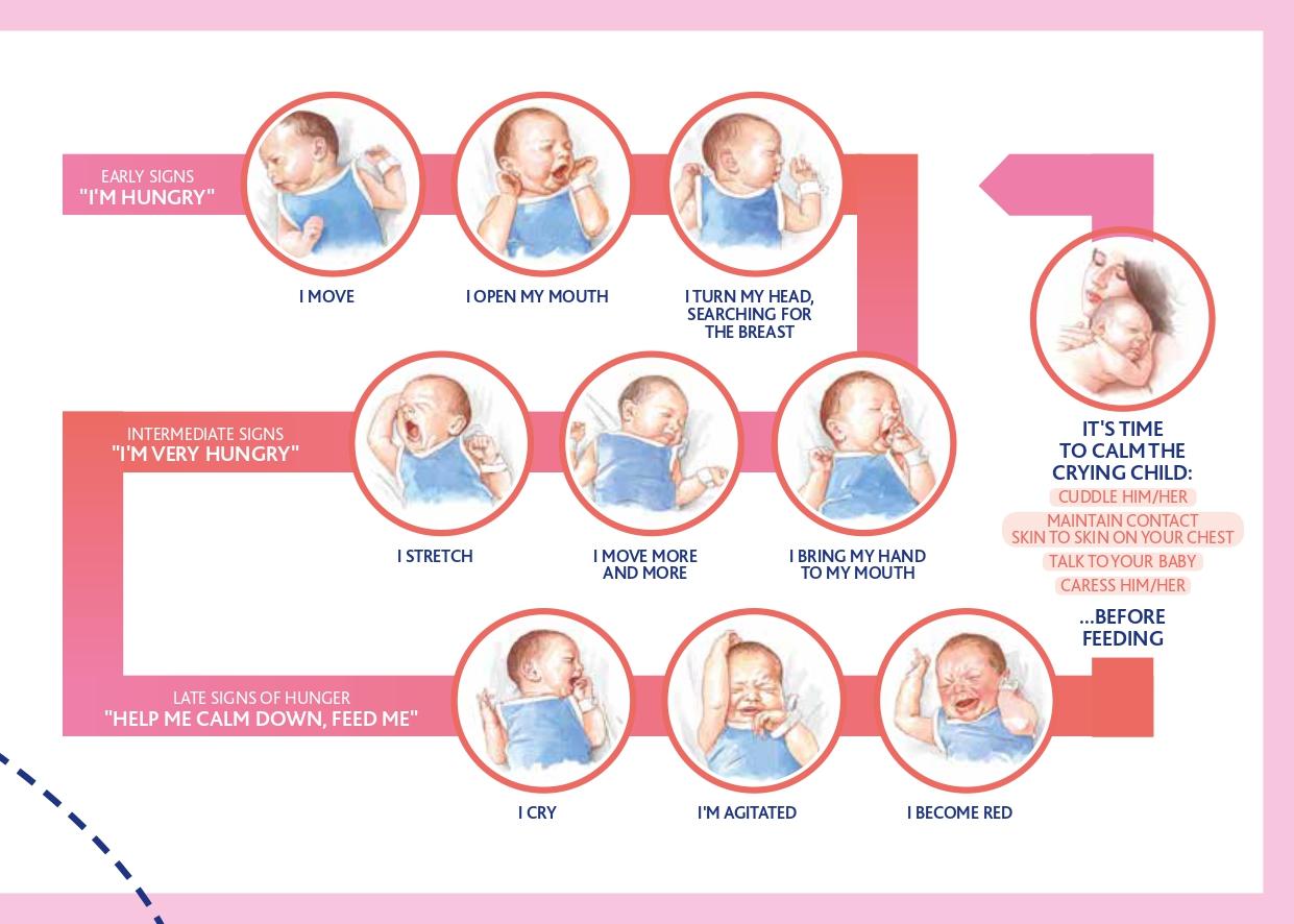 breastfeeding-guide2019-osservatorio-chicco-bassa-page-0017.jpg
