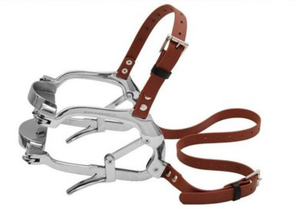 millennium speculum with biothane straps drop forged stainless steel promax equine dental