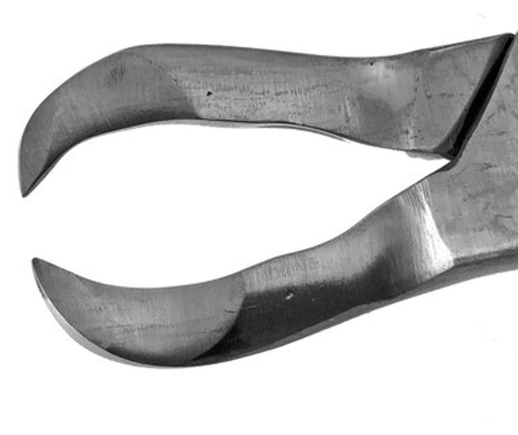 Mitz Cow Horn Forceps - #94553