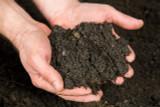 Wonderpost Premium Norfolk Top soil (1000 Ltrs)