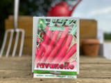RADISH CANDELO DI FUOCO (LONG CANDLE OF FIRE)