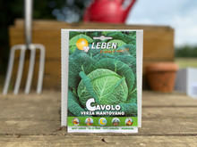 SAVOY CABBAGE  MANTOVANO (GREEN SAVOY)