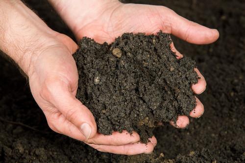 Wonderpost Premium Norfolk Top soil (1 Tonne approx )