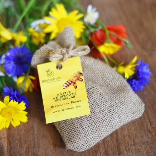 Native Wild Flower BeeBombs