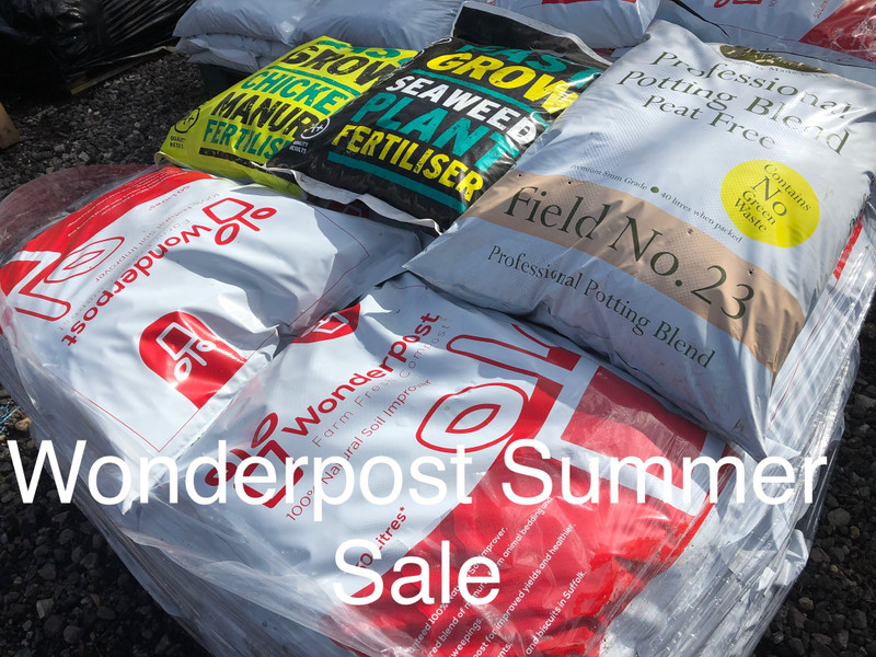 Wonderpost Summer Sale