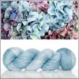 HYDRANGEA BLUE HUE 'LUSTER' SPORT
