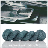 OLD PHOTOGRAPHS 'ENDURING' WORSTED