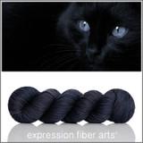 Black Cat 'DEWY' DK