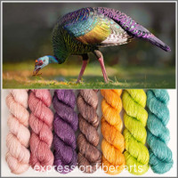 OCELLATED TURKEY HUES 'LUSTER' SPORT MINI KIT