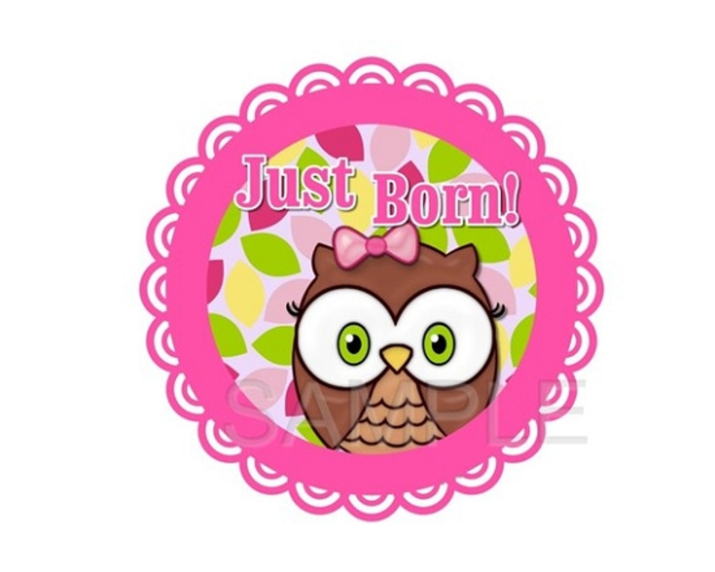 Baby Monthly Photo Stickers: Baby Owl